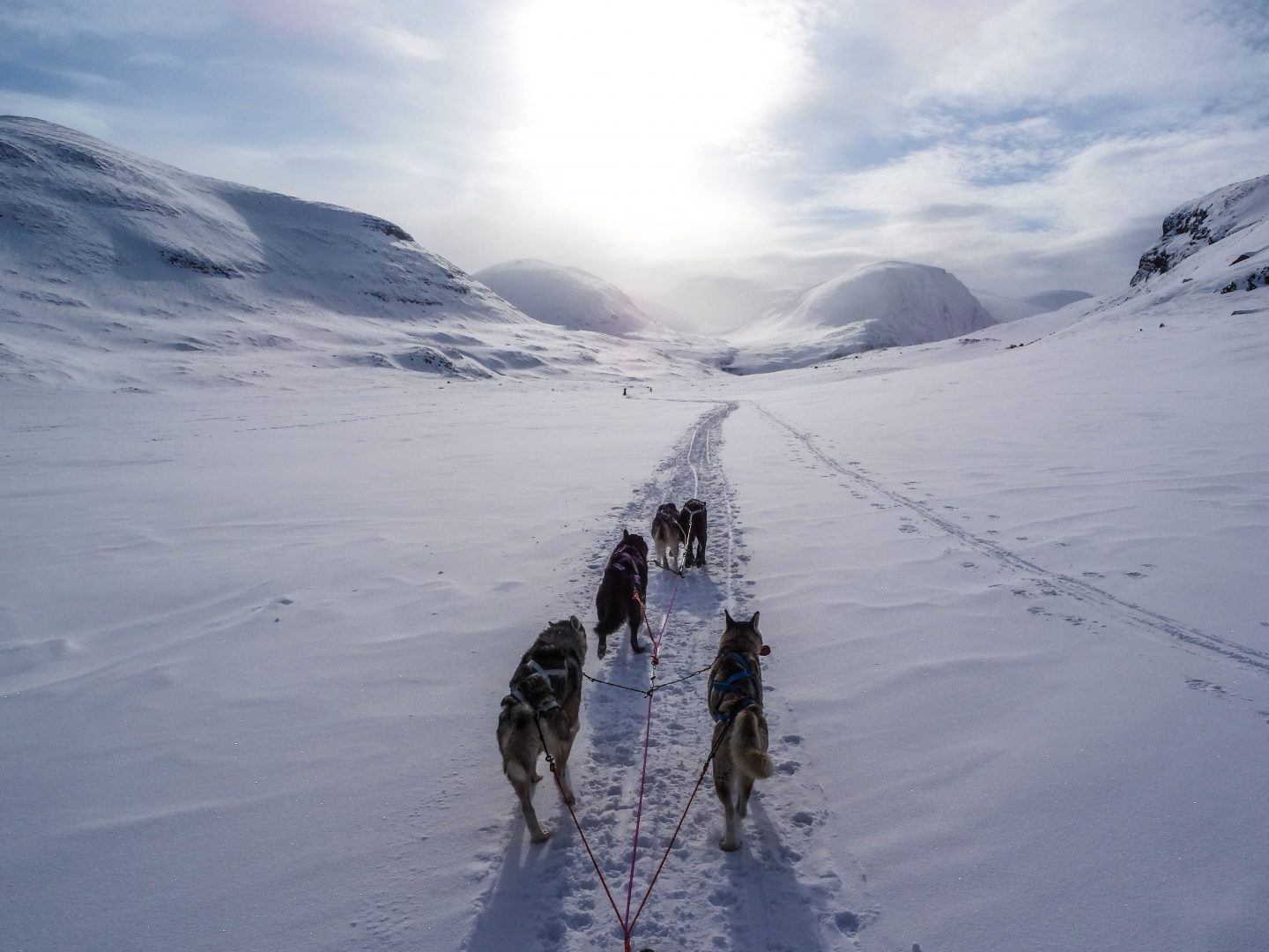 The Places We Wish To Go… Lapland